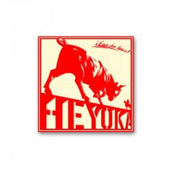 HEYOKA - Etat des lieux- LP