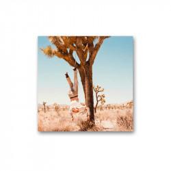 HOAX - S/T  -  LP