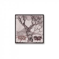 SOCIAL CHAOS/ATTITUDE ZERO - SPLIT EP