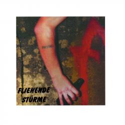 FLIEHENDE STÜRME - Priesthill  - LP