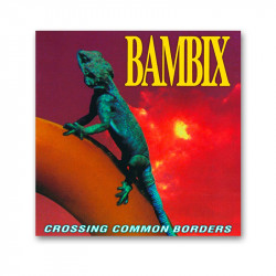 BAMBIX - Crossing common Borders - LP
