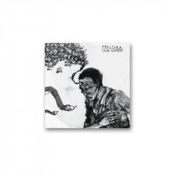 CAVE CANEM/FRACTURA - SPLIT EP