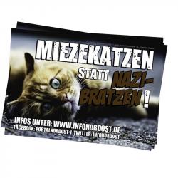 Mietzekatzen statt Nazibratzen - Infonordost