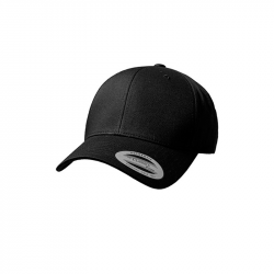 Curved Classic Snapback - FX7706